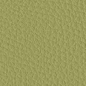 Poltrona Regi : Variante verde acido
