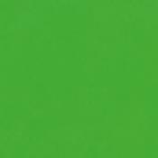 Sedia 226: Variante ecopelle verde