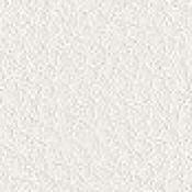 Poltrona visitatore / meeting Jera : Variante bianco