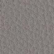 Poltrona visitatore / meeting Jera : Variante grigio