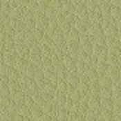 Sedia slitta Stage : Variante verde acido