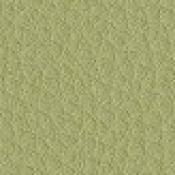 Sedia slitta Formen: Variante verde acido