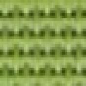 Poltrona Argenta: Variante verde